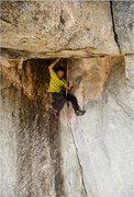 Rock Climbing Photo: Brad Wilson at the intersection of the original ai...