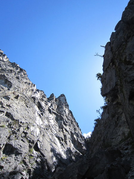 Looking up at the large south face of the white fang