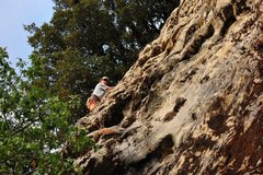 Rock Climbing Photo: Getting cleaner but surrounded by dirt and moss.