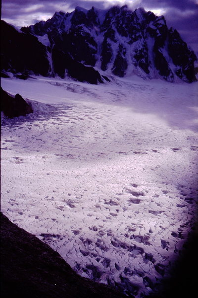"Firn line was quite high that year... warmest winter followed the warmest spring= very little snow coverage. We were calling the glacier ""the devil sea""! Looking west to the Rooster Comb."