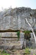 Rock Climbing Photo: Mossy Wall