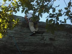 Rock Climbing Photo: Placing a cam to protect the final move to the top...