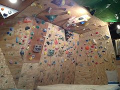 Rock Climbing Photo: Woody