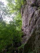 Rock Climbing Photo: Lichen It