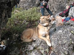 Rock Climbing Photo: Karhu enjoying a day cragging, Land of the Lost