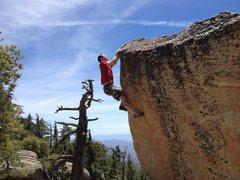 Rock Climbing Photo: Short but sweet!