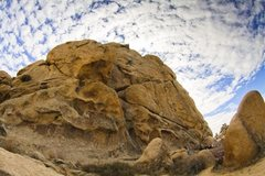 Rock Climbing Photo: Finishing PeeWees piton