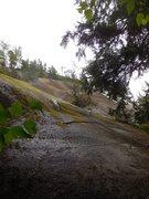 Rock Climbing Photo: Looking up at the AMO Wall.