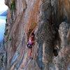 Nevada climber high on Iris.
