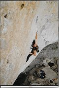 "Rock Climbing Photo: ""The Successor"" (5.13b red point)"