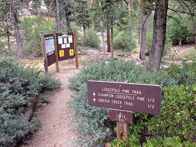 The trailhead for Siberia Creek, Big Bear South