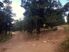 Rock Climbing Photo: Fortress Approach Photo 2: Fork.  The access road ...