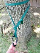 Rock Climbing Photo: Webbing wrapped around tree twice and ends connect...