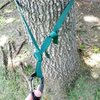 Webbing wrapped around tree twice and ends connected with water knot. Simple overhand used to create master point.