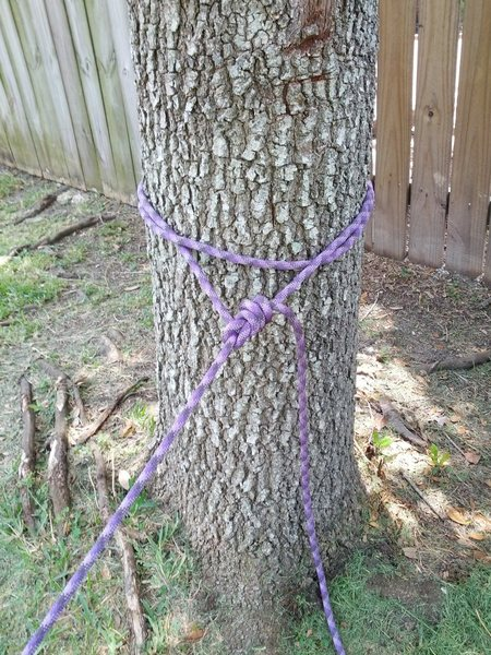Rope tree anchor w/bowline knot backed up with double fisherman.
