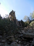 Rock Climbing Photo: Paired Pole Pillars from the La Luz trail