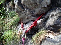 Rock Climbing Photo: New slings 7/16/14