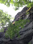Rock Climbing Photo: Steve leading. Route goes left over roof at horn.
