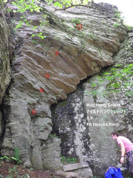 Rock Climbing Photo: Photo showing most of the bolts. There are one or ...