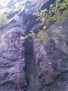 Rock Climbing Photo: Chimney of JG/The Chiseler