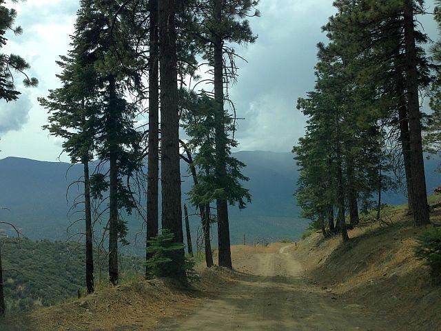 Rock Climbing Photo: Sugarloaf Truck Trail/Radford Road (2N06), Big Bea...