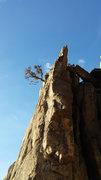 Rock Climbing Photo: Perspective of the climb.