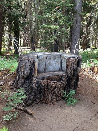 Log chair along the Siberia Creek Trail, Big Bear South