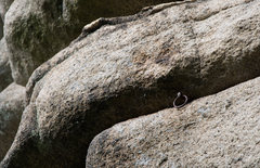 Rock Climbing Photo: Old pin on the Rudolfstein