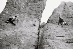 Rock Climbing Photo: Go Dog Go and Captain Xenolith