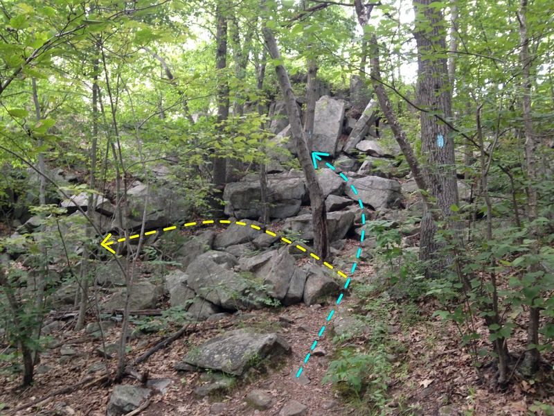 """3. Trail """"junction"""" (10 mins from parking). Stay on trail to reach top of Slab or [[109085946]].  Turn left for bottom of Slab or [[109303497]]."""