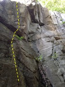 Rock Climbing Photo: Palm Pilot