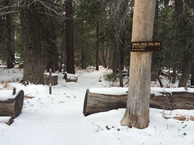 Siberia Creek Trail, winter 2013.