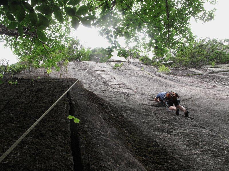 Climbing the incredible Beanstalk crack