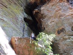 Rock Climbing Photo: Staring Up at Jungle Beat 5.10a