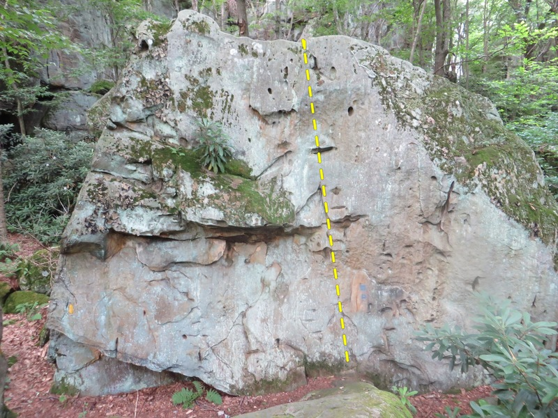 First boulder, 17 footer.  V1ish problem pretty much up the center, possibly harder problems on the left, needs cleaned up though before attempts can be made.<br> <br> No info on first sends,  Ill name it &quot;ain't no thang&quot; :)