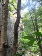 Rock Climbing Photo: This is a shot of the main wall, hard to get a dec...