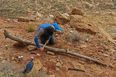 Rock Climbing Photo: Man at work...David working on the crucial access ...