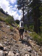 "Rock Climbing Photo: George Creek isn't all ""bushwhacking"""