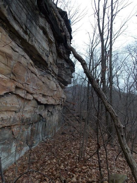 Flood Rocks, another shot of the main wall from a different angle.  The highest route is 37.5 feet measured.