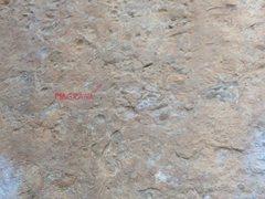 Rock Climbing Photo: Magrana