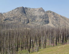 Rock Climbing Photo: Pick Peak from the approach trail to the SE (open ...