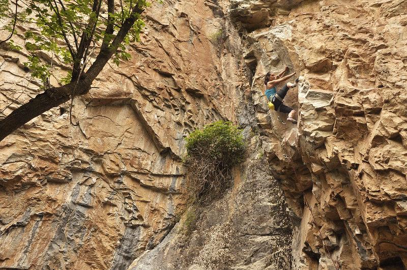 Rock Climbing Photo: Marieta Akalski Rmt on Eulogy.