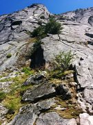 Rock Climbing Photo: From the start of Blueberry Buttress looking up th...
