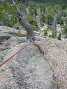 Rock Climbing Photo: Deb climbs near the start of the climb.