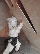 "Rock Climbing Photo: Mesuer and cut the pre drilled 3/4"" climbing ..."