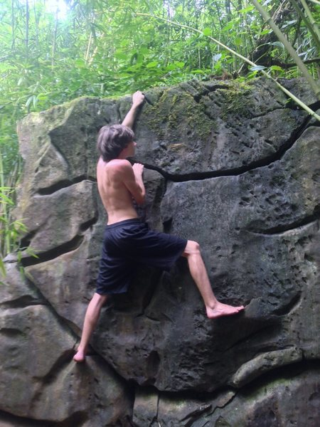 Rabid forest creature working on the Makaleha boulder