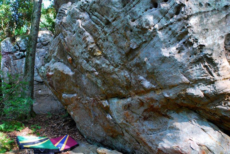 Pachyderm Boulder Wall