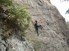 Rock Climbing Photo: Mary leading Elwood P. Dowd.