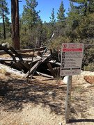 Rock Climbing Photo: Remnants of an old mine, Holcomb Valley Pinnacles