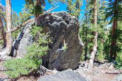 Rock Climbing Photo: Morpheus.